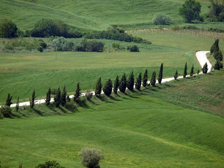 The landscape of the Val d�Orcia. Tuscany. Italiy Stock Photo - 7698399