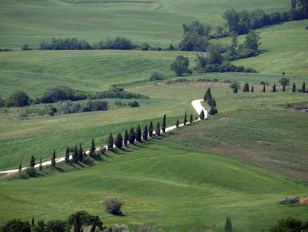 The landscape of the Val dOrcia. Tuscany. Italiy photo