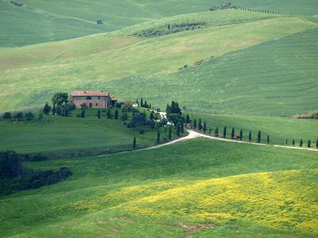 rolling landscape: The landscape of the Val d�Orcia. Tuscany. Italiy