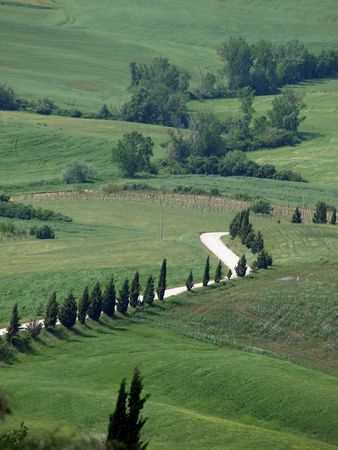 The landscape of the Val d�Orcia. Tuscany. Italiy Stock Photo - 7698494