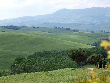 orcia: The landscape of the Val d�Orcia. Tuscany. Italy Stock Photo