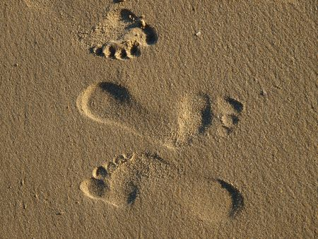 footprints in the wet sand photo
