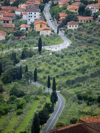 typical Tuscan landscape with olive groves and cypress trees photo
