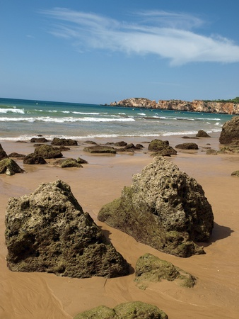 vilamoura: Algarve coast at low tide the ocean
