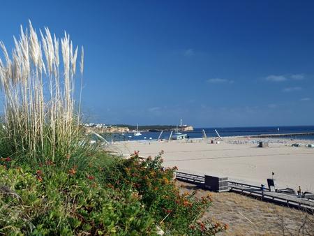 rocha: One of the most beautiful beaches in the world - Praia da Rocha in Portimao, Algarve, Portugal