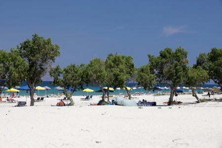 dodecanese: Mastichari beach on Kos Island, Dodecanese  Stock Photo