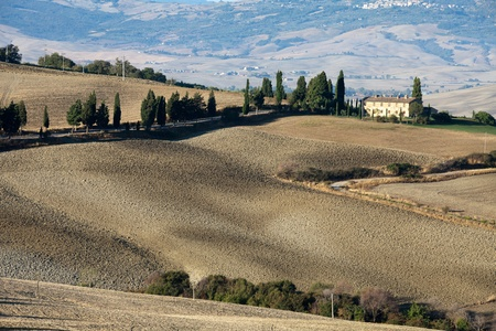 The hills around Pienza and Monticchiello  Tuscany, Italy. Stock Photo - 10719092