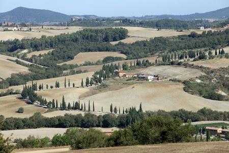 The hills around Pienza and Monticchiello  Tuscany, Italy. Stock Photo - 10802935