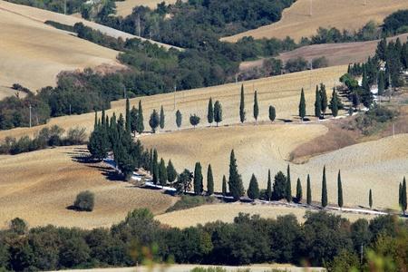 The hills around Pienza and Monticchiello  Tuscany, Italy. photo
