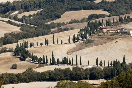 The hills around Pienza and Monticchiello  Tuscany, Italy. Stock Photo - 10942815