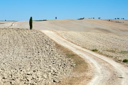 The landscape of the  Tuscany. Italy Stock Photo - 10942787