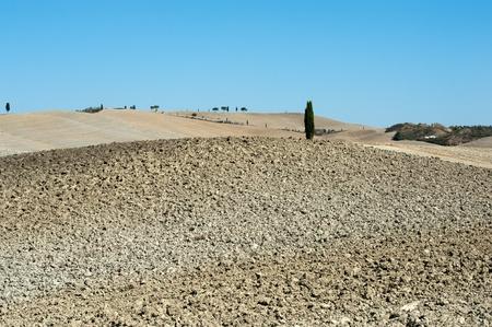 The landscape of the  Tuscany. Italy Stock Photo - 10942789