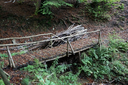 Wooden bridge covered with dry leaves photo