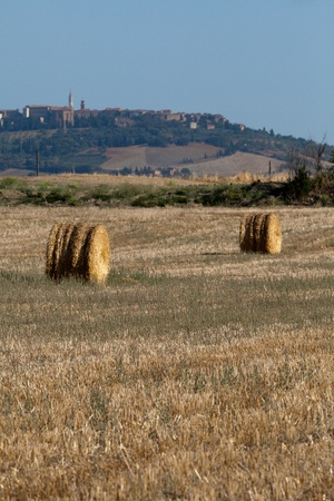 Golden Hay Bales on a field in the Tuscany photo