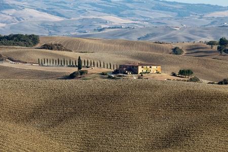 The landscape of the  Tuscany. Italy photo