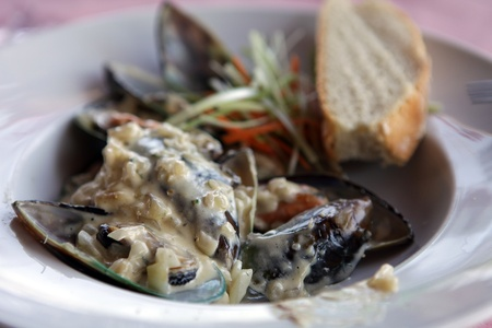 delicious mussels in cream sauce 版權商用圖片