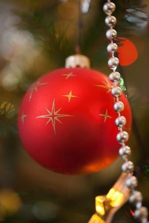 Christmas bauble on christmas tree photo