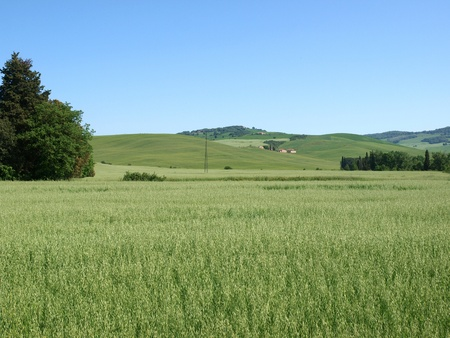 The landscape of the Val. Tuscany. Italiy photo