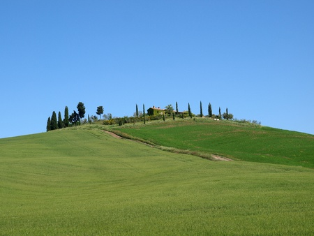 valdorcia: The landscape of the Val d'Orcia. Tuscany. Italiy Stock Photo