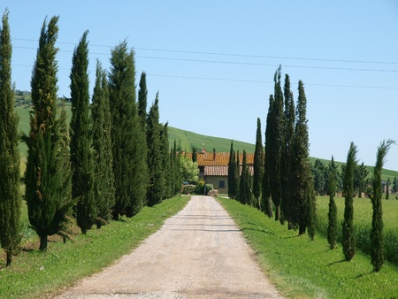 val: The landscape of the Val d'Orcia. Tuscany. Italiy Stock Photo