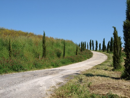 The landscape of the Tuscany. Italiy Stock Photo - 12337358