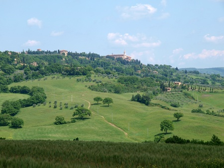 valdorcia: The landscape of the Val d'Orcia. Tuscany.  Stock Photo