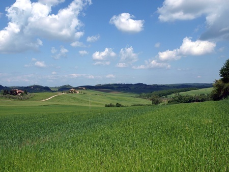 The landscape of the Val d'Orcia. Tuscany.  photo