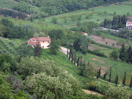 Villa in Tuscany amongst  olive groves photo