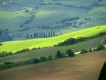 The landscape of the Val d�Orcia. Tuscany. Italiy Stock Photo - 12344968