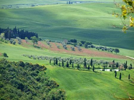 val dorcia: The landscape of the Val dOrcia. Tuscany. Italy
