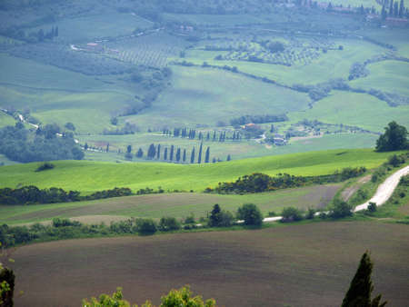 valdorcia: The landscape of the Val d�Orcia. Tuscany. Italy