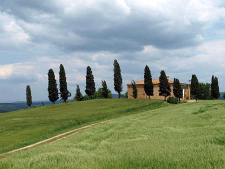The landscape of the Val d�Orcia. Tuscany. Italy Stock Photo - 12612618