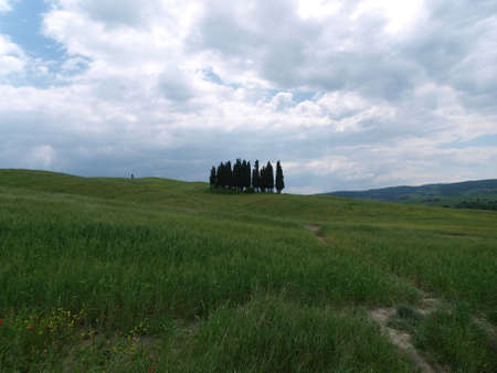 The landscape of the Val d�Orcia. Tuscany. Italy Stock Photo - 12612641