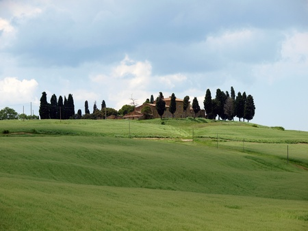 val dorcia: The landscape of the Val d�Orcia. Tuscany. Italy