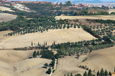 The landscape of the  Tuscany  Italy photo