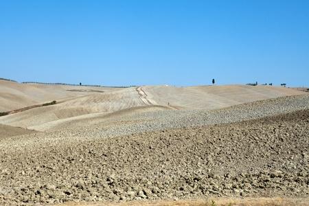 The landscape of the  Tuscany. Italy Stock Photo - 13038206