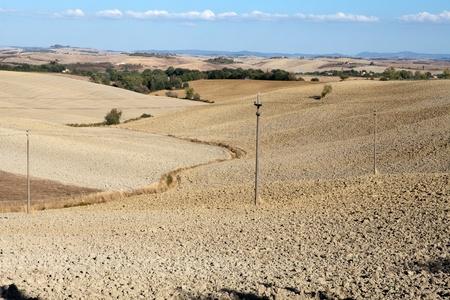 The landscape of the  Tuscany. Italy Stock Photo - 13137092