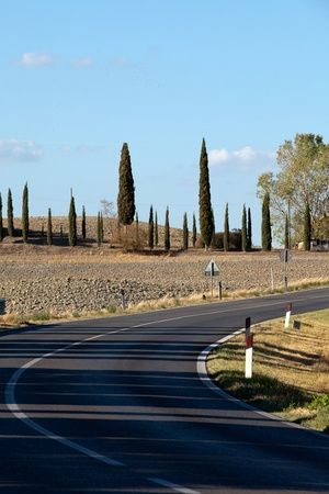 The landscape of the  Tuscany. Italy Stock Photo - 13137040