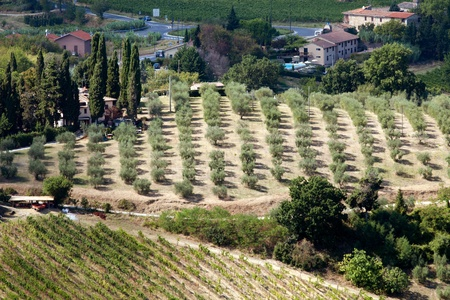 Hills around San Gimignano. Tuscany Stock Photo - 13282902