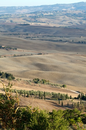 The landscape of the  Tuscany. Italy Stock Photo - 13343316