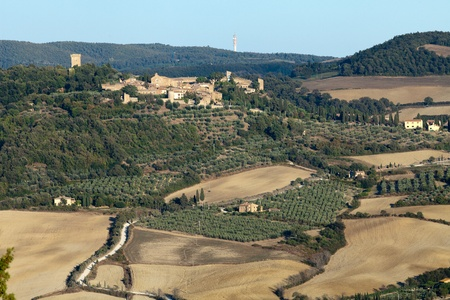 The landscape of the  Tuscany. Italy Stock Photo - 13340265