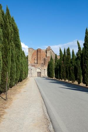 Alley near the Abbey of San Galgano photo
