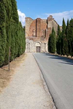 Alley near the Abbey of San Galgano photo