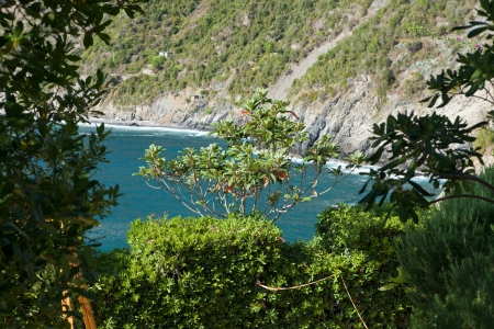 Cinque Terre-coast between Manarola and Corniglia photo