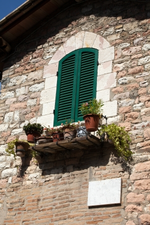 flowers hangs on the window of a home Stock Photo - 14428053