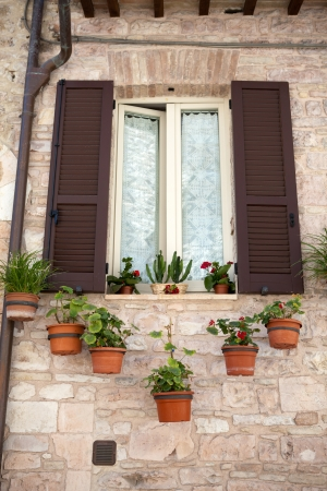 flowers hangs on the window of a home Stock Photo - 14550032