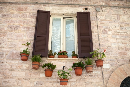 flowers hangs on the window of a home Stock Photo - 14550036