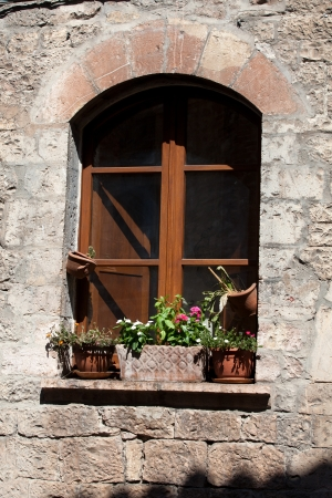 flowers hangs on the window of a home Stock Photo - 14658411