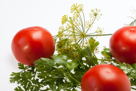 leaves parsley, tomatoes and dill photo