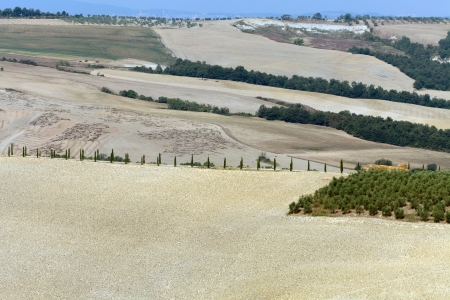 Crete Senesi - The landscape of the  Tuscany. Italy Stock Photo - 15184071